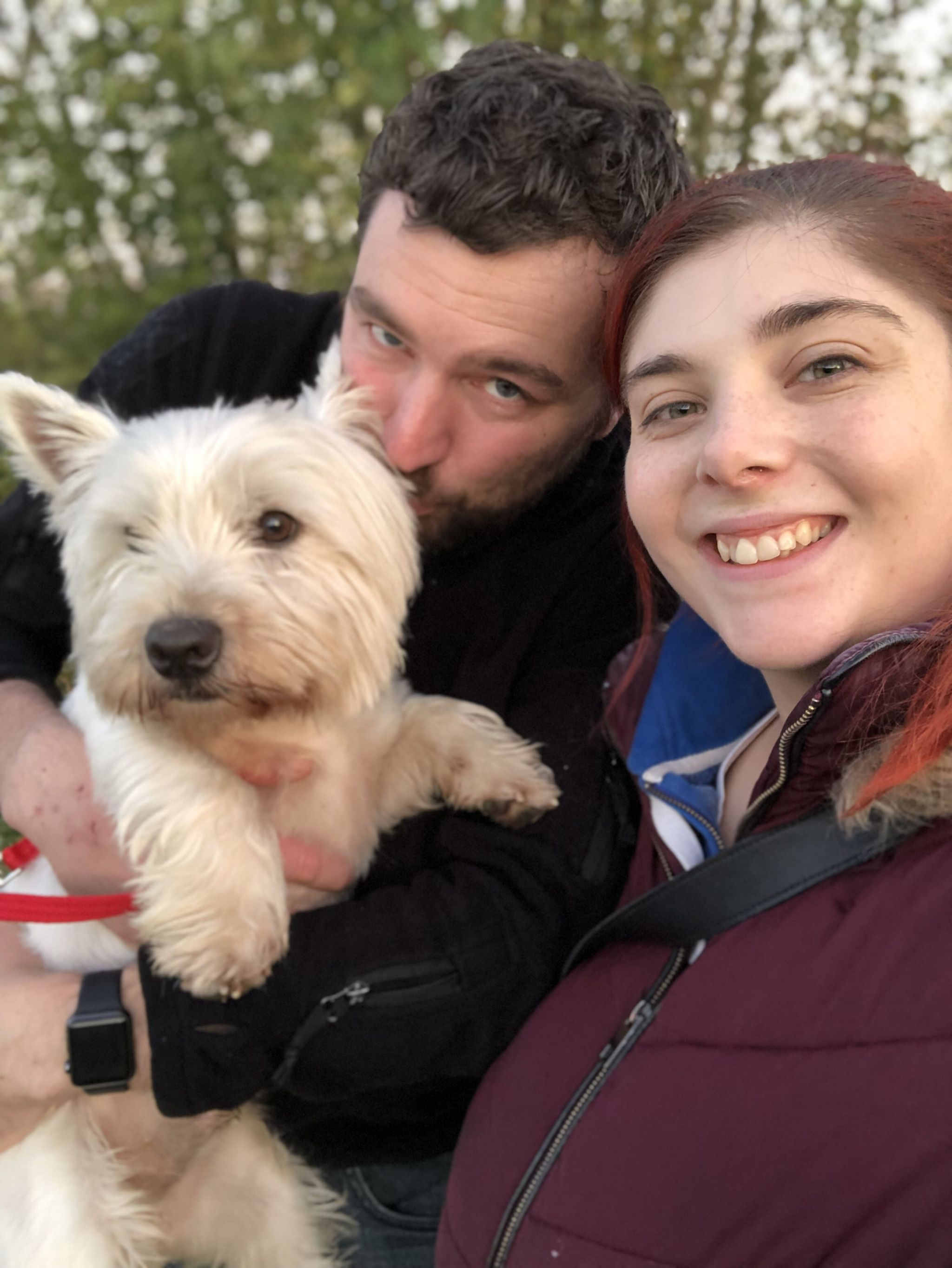 October Roundup -Our Anniversary, big changes and we got a dog !
